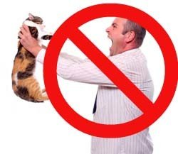 Don't punish cats. Instead, identify and address the causes of the behavior.