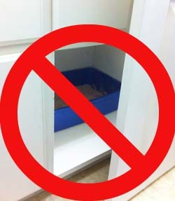 Litter box locations matter